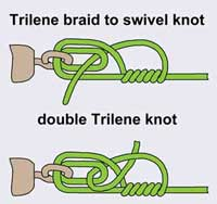 image of single and double trilene knot