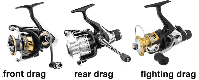 Everything about reels and lines for Different types of fishing reels